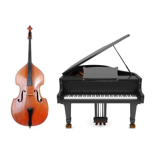 Susi Weiss Duo - Piano und Kontrabass